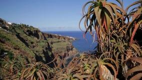 Πορτογαλία - Μαδέρα - ολισθαίνων ρυθμιστής που πυροβολείται της θάλασσας απόθεμα βίντεο