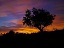 Πορτογαλικό λαμπρό πορτοκαλί, πορφυρό ηλιοβασίλεμα στοκ φωτογραφία με δικαίωμα ελεύθερης χρήσης