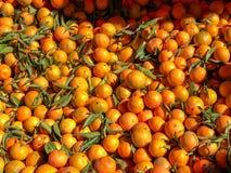 Πορτοκάλια για την πώληση σε ένα παζάρι αγοράς στοκ εικόνες