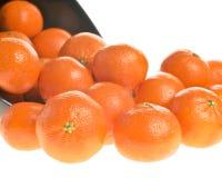 πορτοκάλια κύπελλων Στοκ φωτογραφίες με δικαίωμα ελεύθερης χρήσης