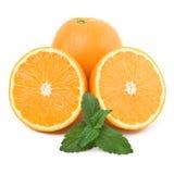 πορτοκάλια μεντών Στοκ Εικόνα