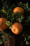 Πορτοκάλια σε ένα καλάθι Στοκ Εικόνες