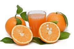 πορτοκάλια χυμού Στοκ φωτογραφίες με δικαίωμα ελεύθερης χρήσης