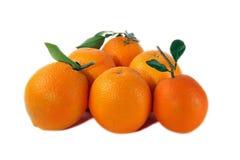 πορτοκάλια Στοκ Εικόνα