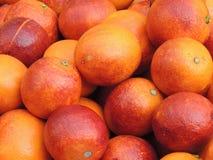 Πορτοκάλι αίματος Στοκ εικόνα με δικαίωμα ελεύθερης χρήσης