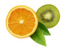 πορτοκάλι ακτινίδιων Στοκ εικόνα με δικαίωμα ελεύθερης χρήσης