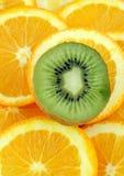 πορτοκάλι ακτινίδιων Στοκ Φωτογραφία