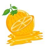 πορτοκάλι γεύσης διανυσματική απεικόνιση