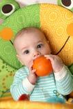 πορτοκάλι δαγκώματος μωρών στοκ φωτογραφίες