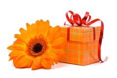 πορτοκάλι δώρων λουλο&upsilo στοκ φωτογραφίες