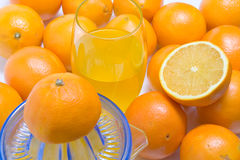 πορτοκάλι εσπεριδοει&del Στοκ φωτογραφία με δικαίωμα ελεύθερης χρήσης