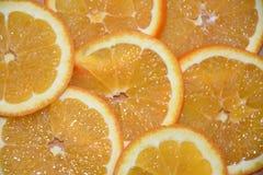 Πορτοκάλι και λεμόνι φετών στο λευκό στοκ φωτογραφίες με δικαίωμα ελεύθερης χρήσης
