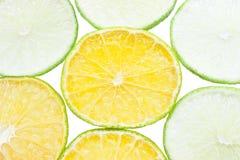 Πορτοκάλι και λεμόνι Στοκ Εικόνα