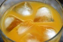 πορτοκάλι κοκτέιλ στοκ φωτογραφία