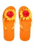πορτοκάλι λουλουδιών π Στοκ Εικόνες