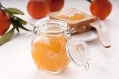 πορτοκάλι μαρμελάδας Στοκ εικόνα με δικαίωμα ελεύθερης χρήσης