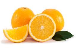 πορτοκάλι φύλλων Στοκ φωτογραφίες με δικαίωμα ελεύθερης χρήσης