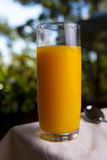 πορτοκάλι χυμού γυαλιο Στοκ εικόνα με δικαίωμα ελεύθερης χρήσης
