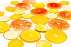πορτοκάλια ασβεστών λεμονιών εσπεριδοειδών στενός δίσκος χρωμάτων έννοιας επάνω στο watercolor ποικιλίας τρόφιμα υγιή αφηρημένη τ Στοκ Εικόνες