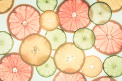 πορτοκάλια ασβεστών λεμονιών εσπεριδοειδών στενός δίσκος χρωμάτων έννοιας επάνω στο watercolor ποικιλίας τρόφιμα υγιή αφηρημένη τ Στοκ Φωτογραφίες