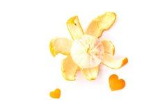 Πορτοκάλια στην άσπρη ανασκόπηση Στοκ Εικόνες