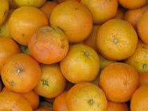Πορτοκάλια στην επίδειξη Στοκ εικόνα με δικαίωμα ελεύθερης χρήσης
