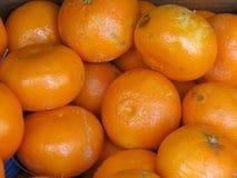 Πορτοκάλια στην επίδειξη Στοκ φωτογραφία με δικαίωμα ελεύθερης χρήσης