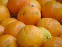 Πορτοκάλια στην επίδειξη Στοκ εικόνες με δικαίωμα ελεύθερης χρήσης