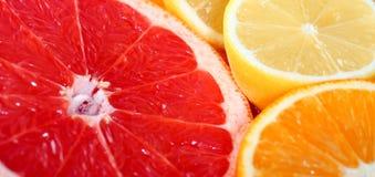 πορτοκάλι λεμονιών γκρέι&pi Στοκ εικόνες με δικαίωμα ελεύθερης χρήσης