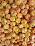πορτοκάλι καρπών Στοκ Φωτογραφίες