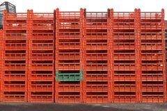 πορτοκάλι κλουβιών Στοκ Φωτογραφίες