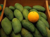 Πορτοκάλι μεταξύ μιας ομάδας μάγκο Στοκ εικόνα με δικαίωμα ελεύθερης χρήσης