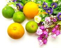 Πορτοκάλι & λουλούδια σε ένα άσπρο υπόβαθρο στοκ εικόνα με δικαίωμα ελεύθερης χρήσης