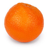 Πορτοκάλι (πορεία ψαλιδίσματος) Στοκ Εικόνες