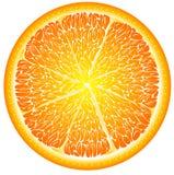 Πορτοκάλι στενό σε έναν επάνω περικοπών απεικόνιση αποθεμάτων