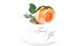 Πορτοκαλής αυξήθηκε, η κάρτα με τις λέξεις σας ευχαριστεί και το φλυτζάνι είναι Στοκ εικόνες με δικαίωμα ελεύθερης χρήσης