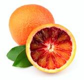 πορτοκαλής ώριμος Στοκ εικόνες με δικαίωμα ελεύθερης χρήσης