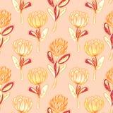 Πορτοκαλί άνευ ραφής διανυσματικό σχέδιο λουλουδιών protea Στοκ Φωτογραφία