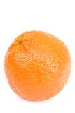 πορτοκαλί λευκό ανασκόπ&e Στοκ εικόνες με δικαίωμα ελεύθερης χρήσης
