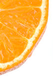 πορτοκαλί λευκό τμήματο&sig Στοκ Εικόνες