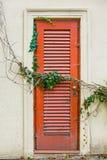 Πορτοκαλί παλαιοί πόρτα και κισσός Στοκ Εικόνες