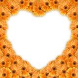 πορτοκαλί πρότυπο καρδιών λουλουδιών Στοκ Εικόνες