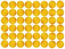 πορτοκαλί πρότυπο καρπού Στοκ Εικόνες