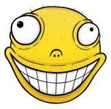 Πορτοκαλί χαμόγελο Στοκ φωτογραφία με δικαίωμα ελεύθερης χρήσης
