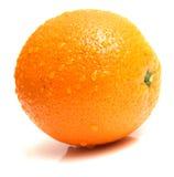 πορτοκαλί ώριμο σύνολο Στοκ εικόνα με δικαίωμα ελεύθερης χρήσης