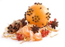 πορτοκαλί spicery καρπού Στοκ Φωτογραφία