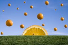 πορτοκαλιά βροχή Στοκ Εικόνες