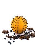πορτοκαλιά καρυκεύματα στοκ εικόνα