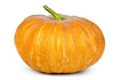 πορτοκαλιά κολοκύθα Στοκ εικόνες με δικαίωμα ελεύθερης χρήσης
