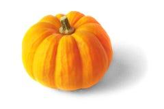 πορτοκαλιά κολοκύθα στοκ εικόνα με δικαίωμα ελεύθερης χρήσης